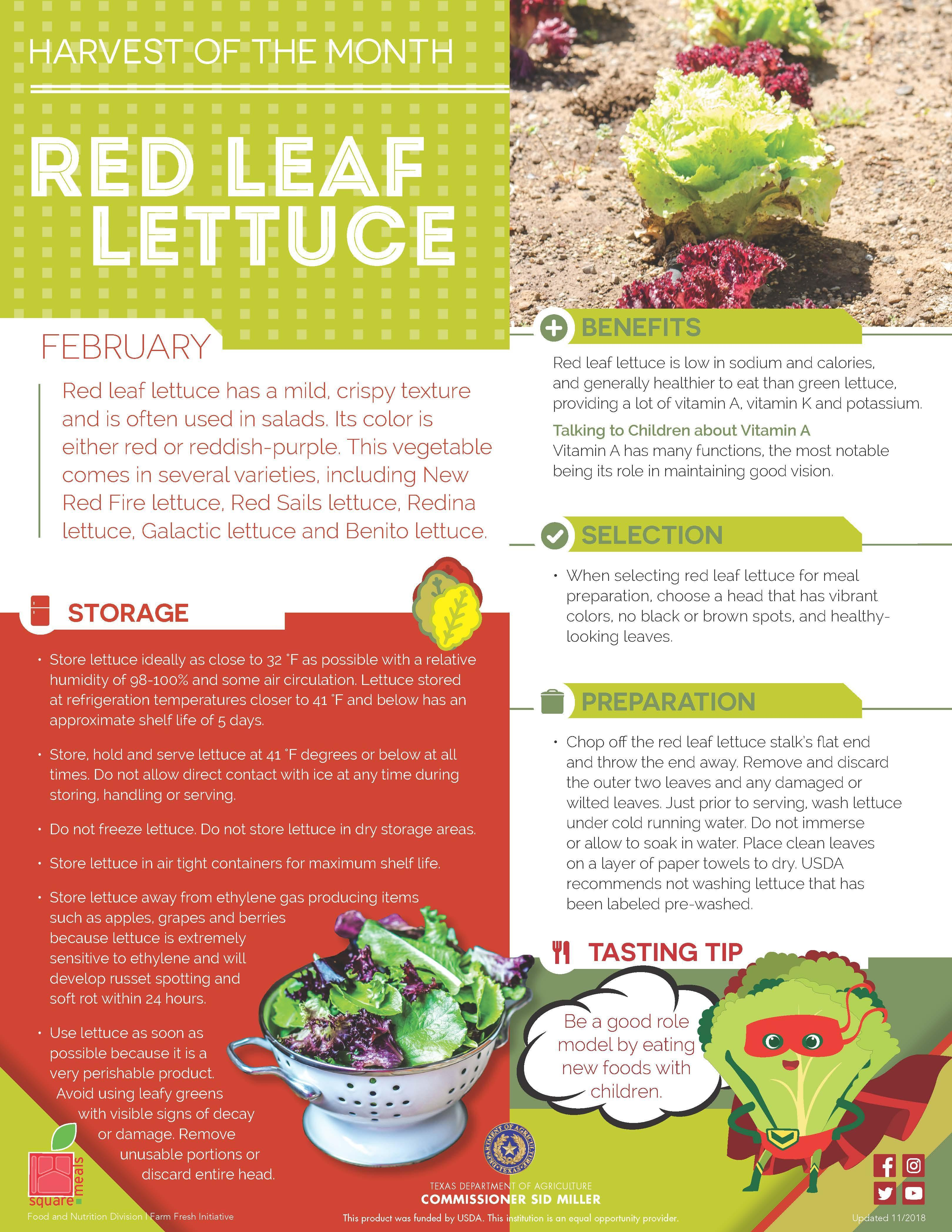 Monthly Harvest, Red leaf lettuce has a mild, crispy texture and is often used in salads. Its color is either red or reddish-purple. This vegetable comes in several varieties, including New Red Fire lettuce, Red Sails lettuce, Redina lettuce, Galactic lettuce and Benito lettuce.