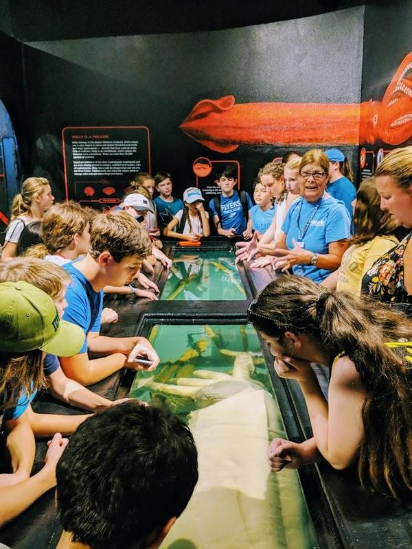 As part of a STEM field trip to Florida, a group of Edison Intermediate School 7th graders visited the Mote Marine Laboratory in Sarasota, where they studied the marine life at the research facility.