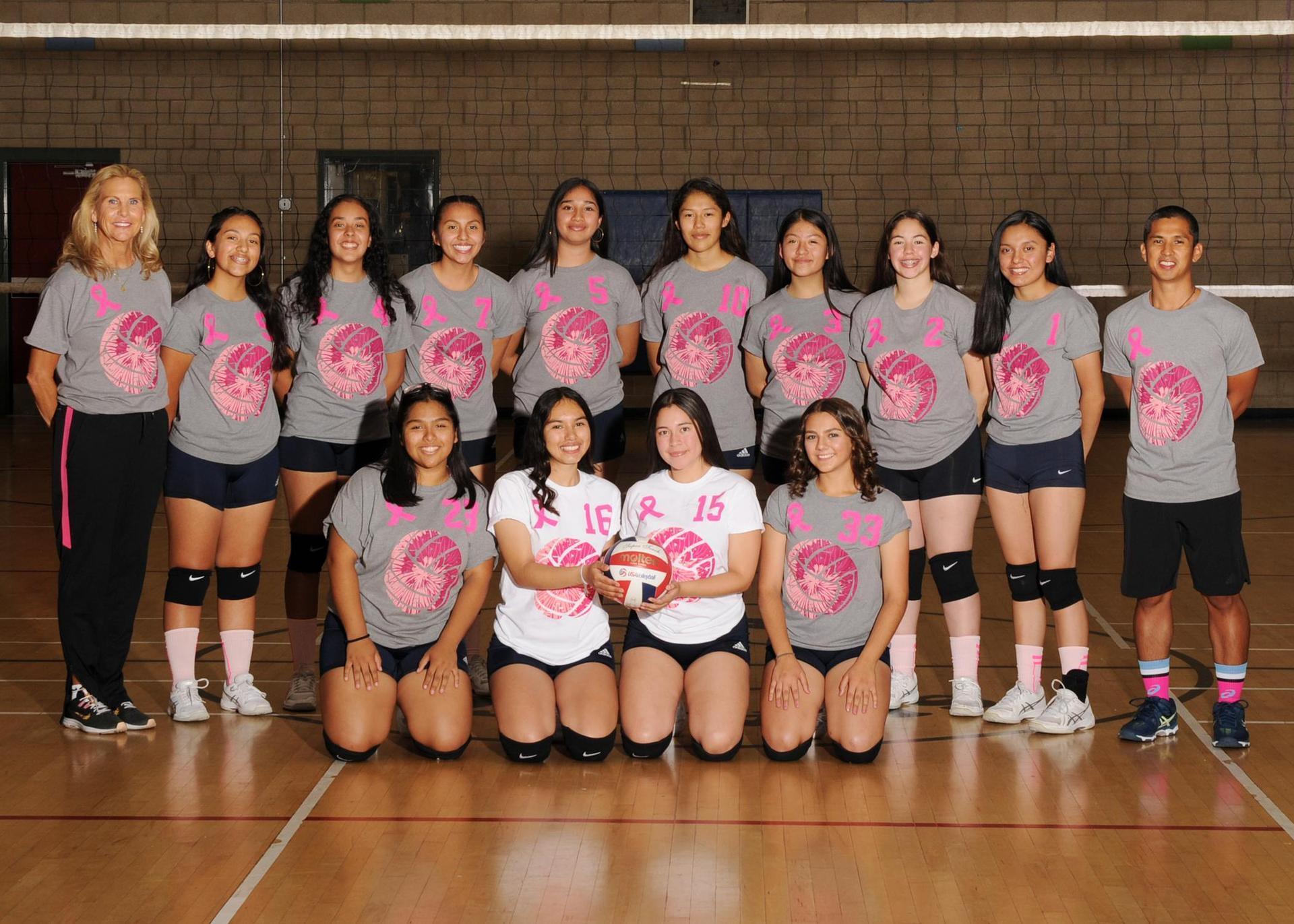 2019-2020 Girls Volleyball Team