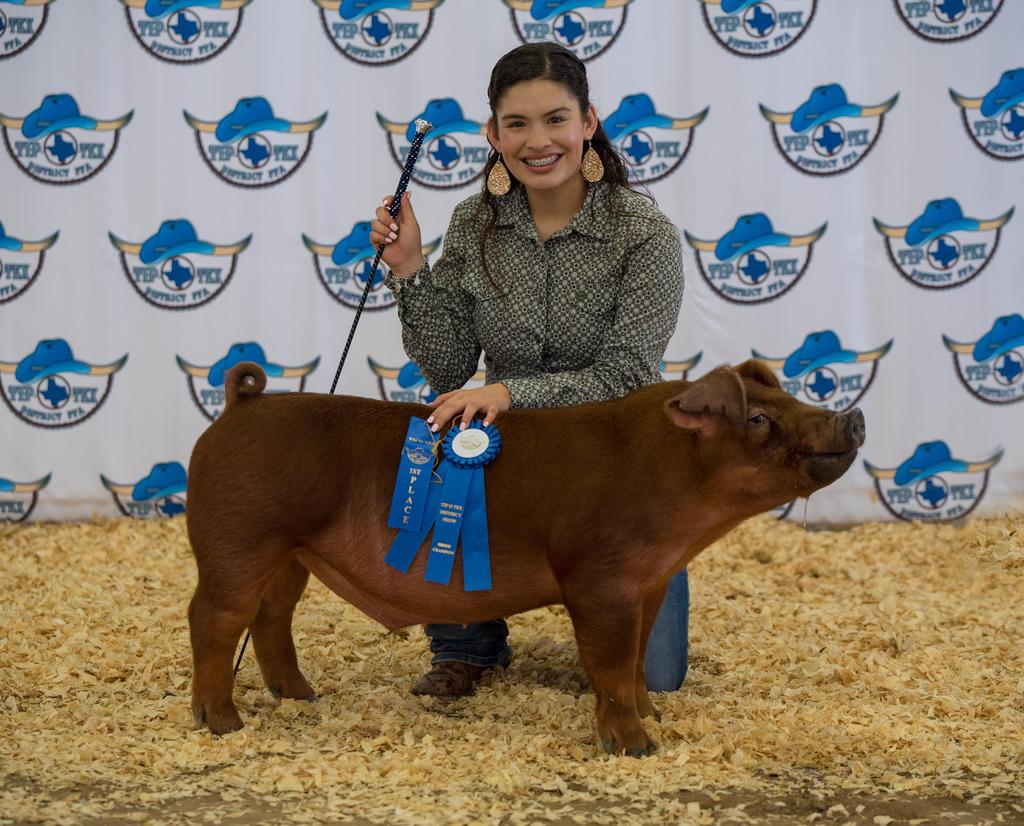Tip-O-Tex District Livestock Show