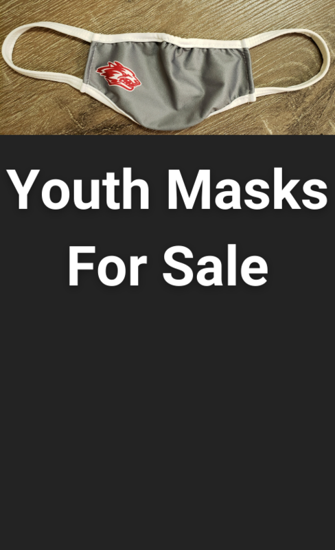 picture of mask