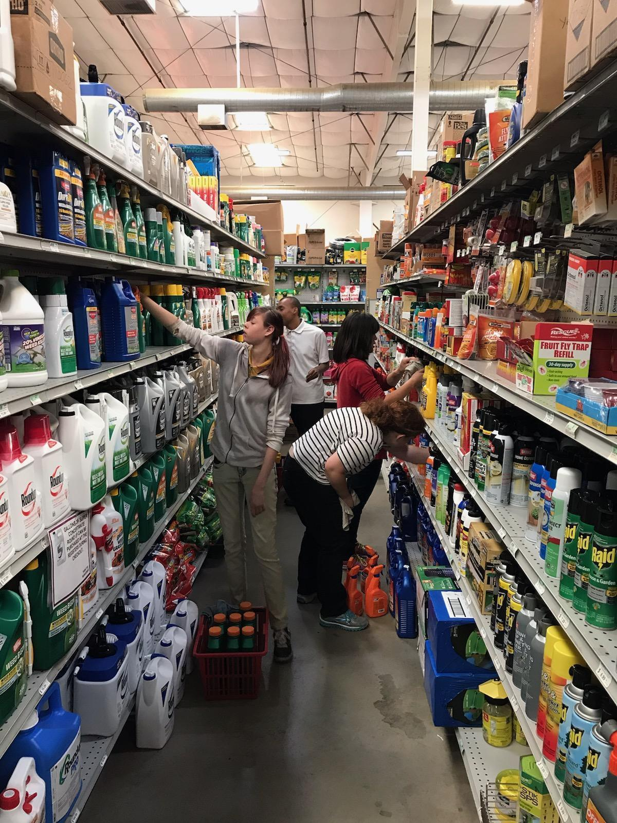 Students looking at store shelves