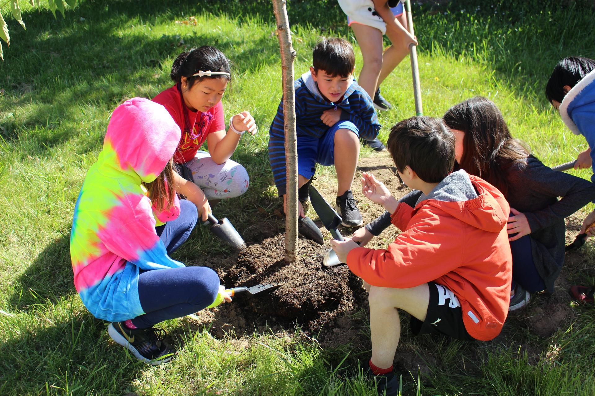 5th Graders Tree Planting