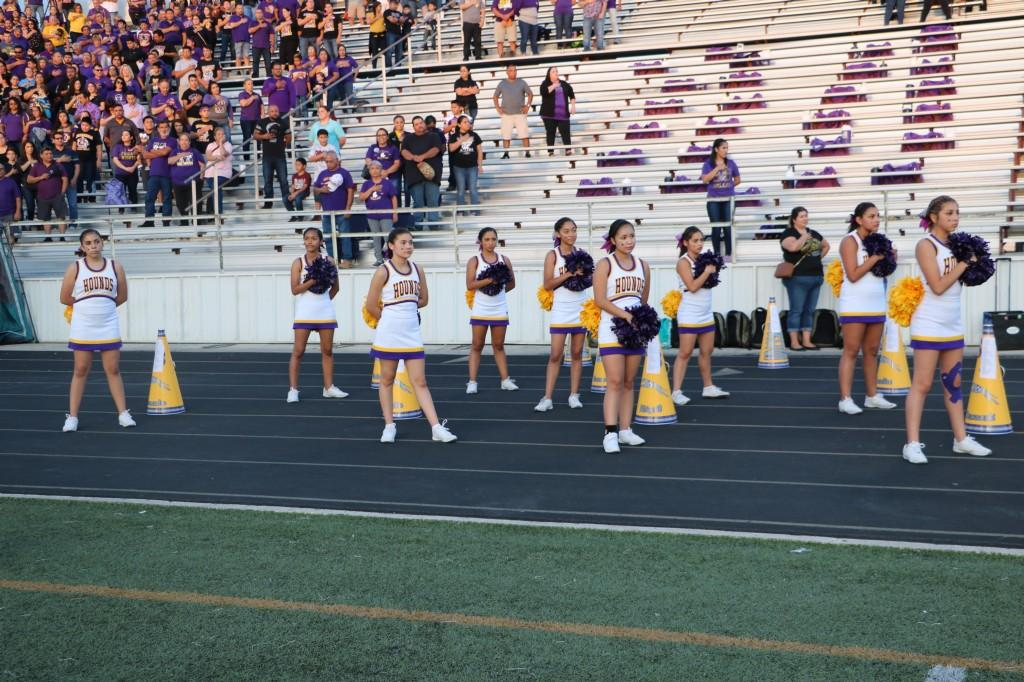 Greyhounds vs SA East Central Hornets 9/08/17