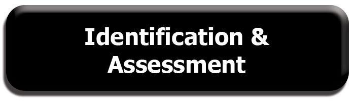 identification and assessments