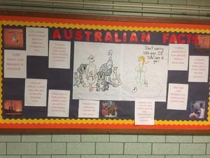 Australian fire facts bulletin board