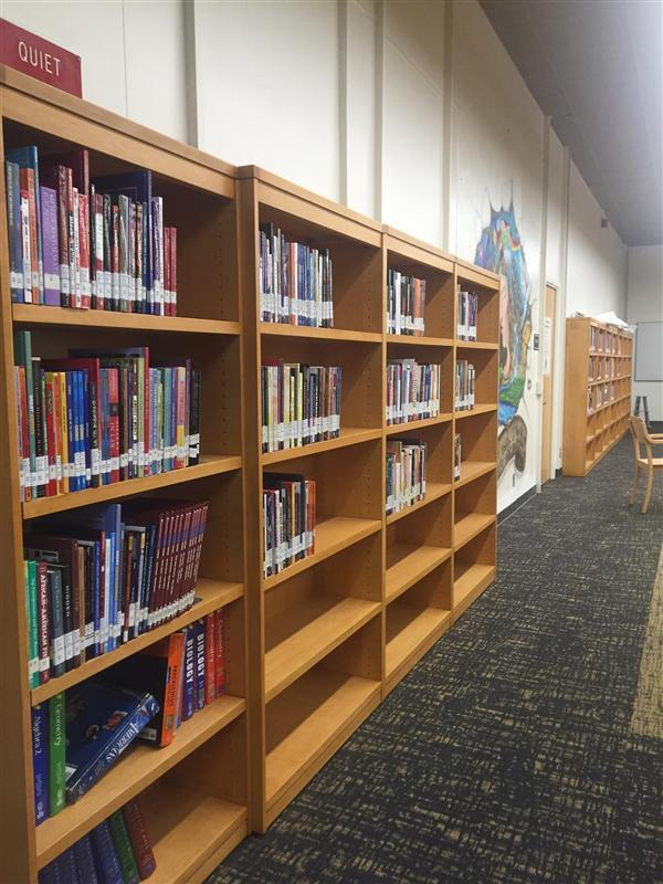 picture of books on bookshelves