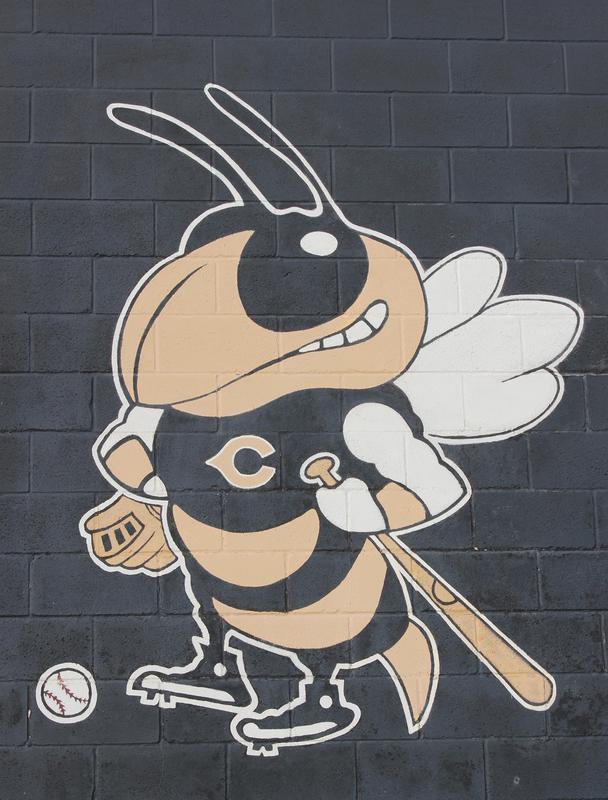 Baseball Bee logo