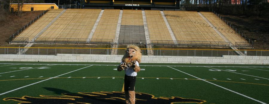 Horn field with the lion mascot.