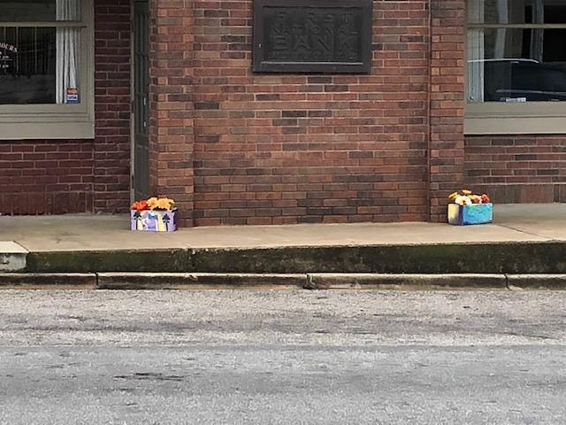 Planters placed at bank by students