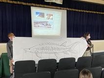 7th grade Endangered Species program