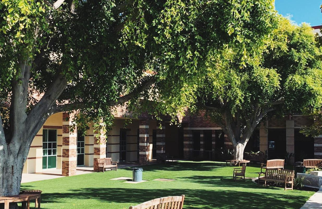 image of a school courtyard with a green lawn
