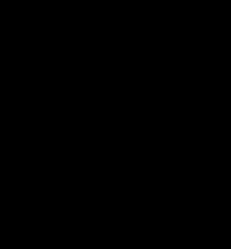 Black VT Logo
