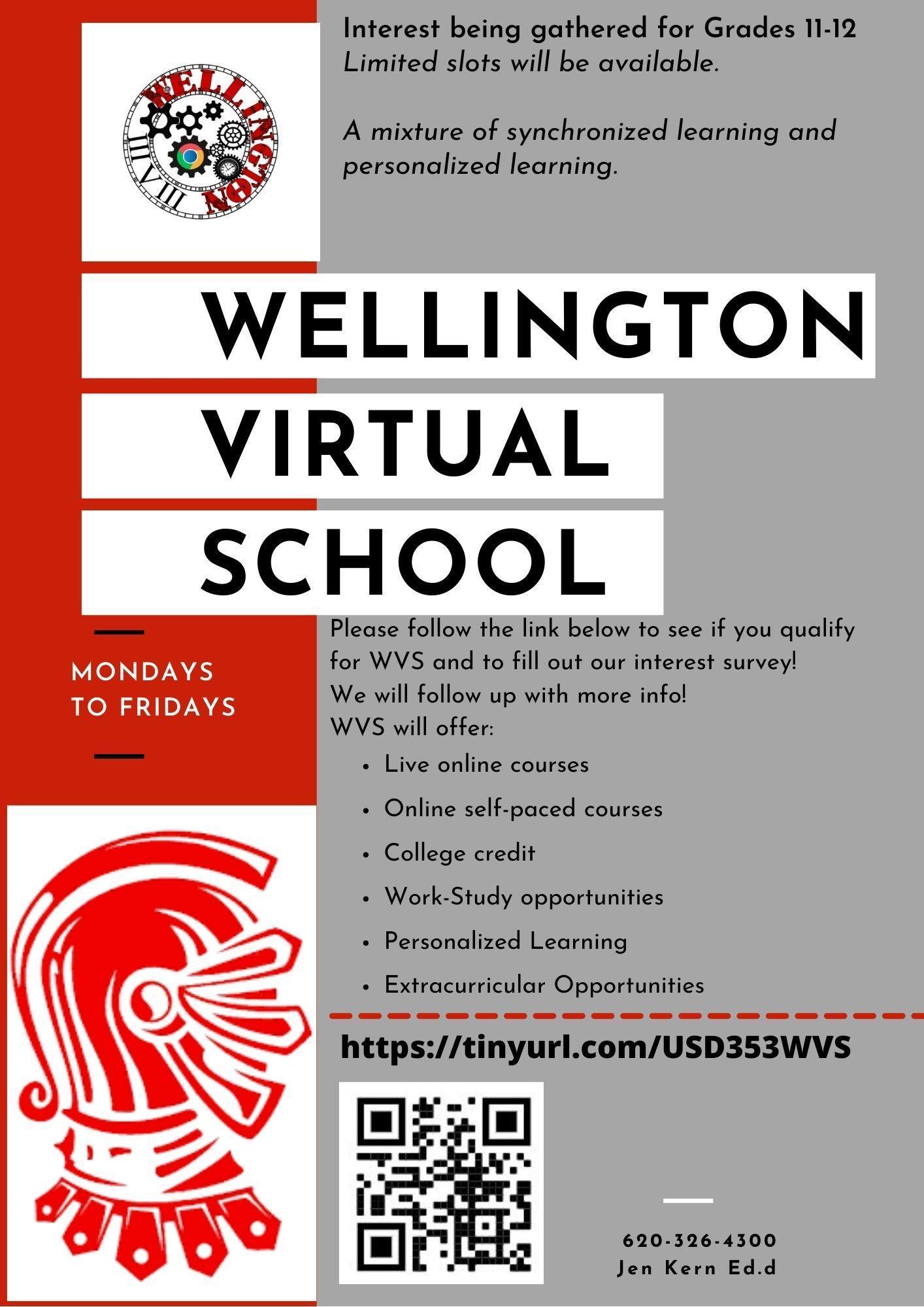 Virtual School Flier