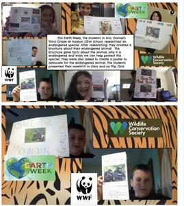 2 collages with assignment description and students holding their endangered species projects