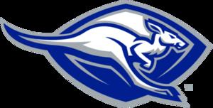 Roo logo.png