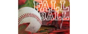 Picture of baseball and fall colored leaves.