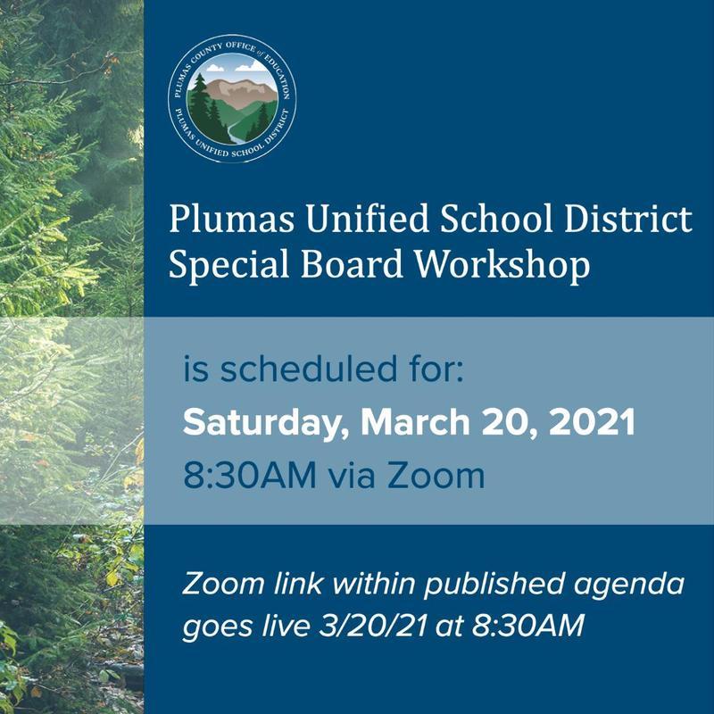 PUSD Special Board Workshop 3/20/21