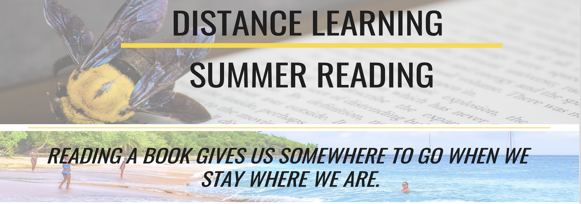 distance learning summer reading