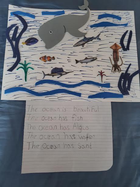 Ocean animals drawing