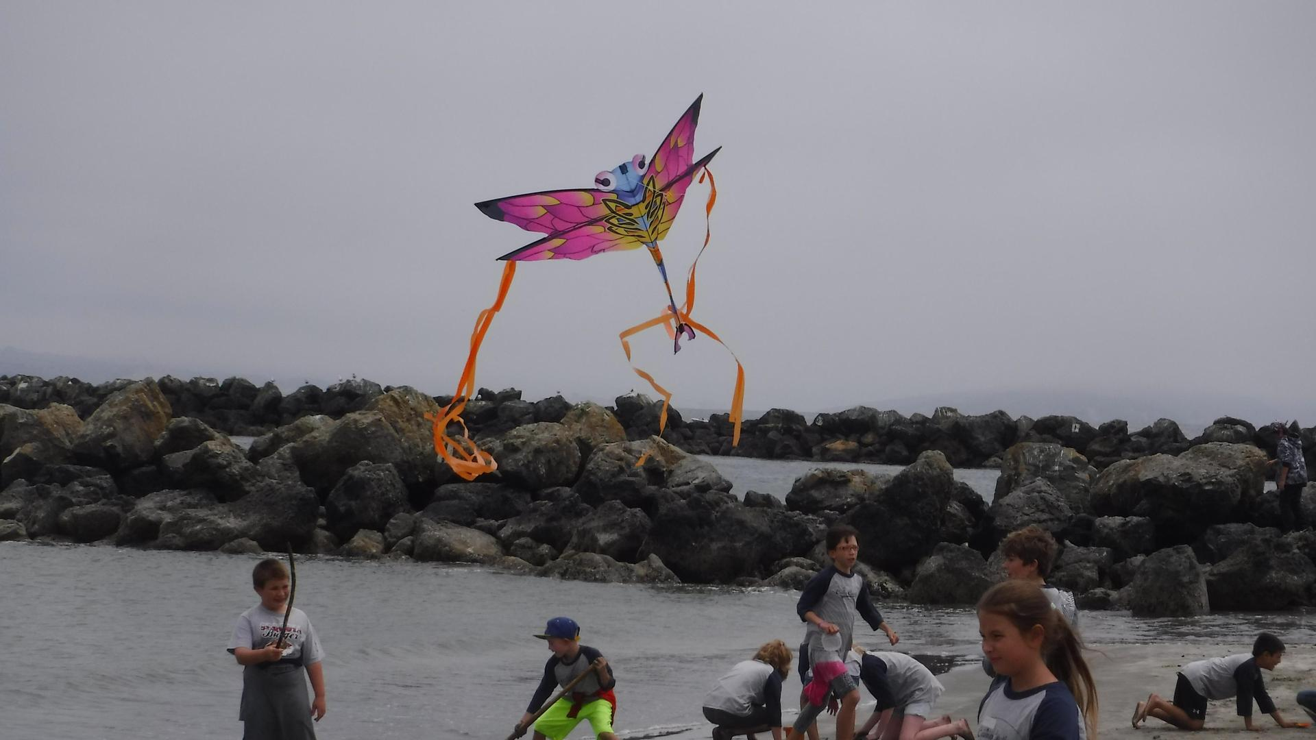 Doran Beach Kite Flying
