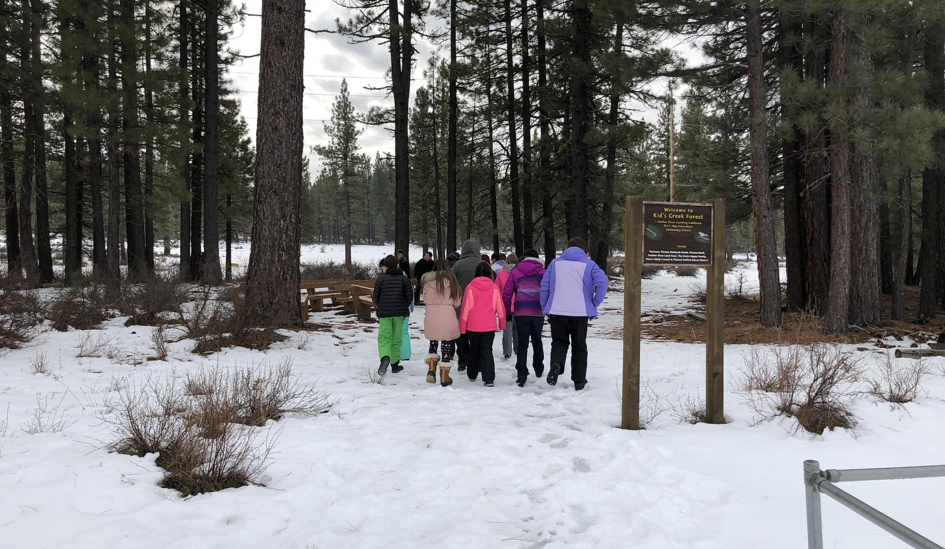 Outdoor Core Learning Landscape at Plumas Unified School District