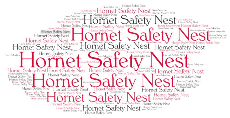 Hornet Safety Nest Featured Photo