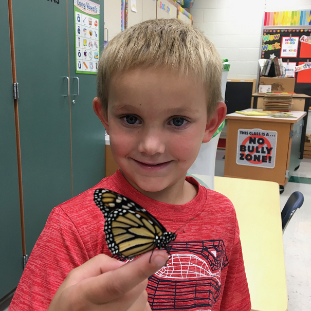 After studying the life cycle of butterflies, Brantley Buell displays this monarch butterfly.