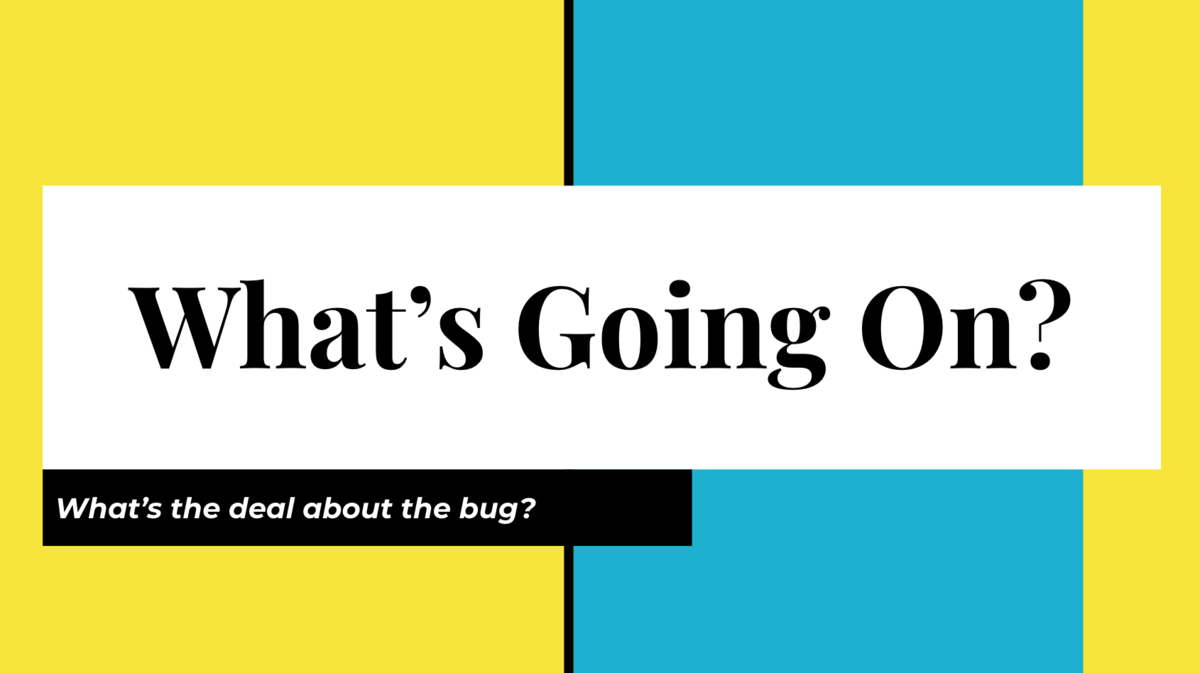 Google Slide With Text:  What's Going On? What's the Deal with the Bug?
