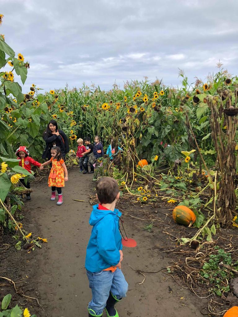 A group of children and a teacher walking through a pumpkin patch
