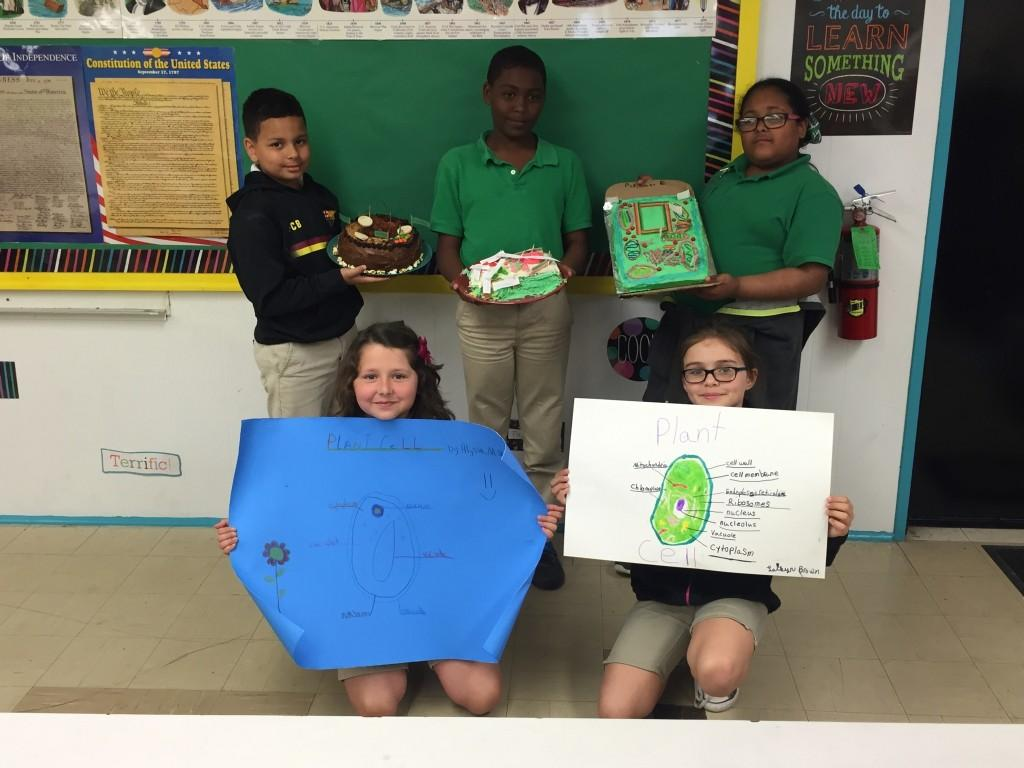 4th grade plannt cell project