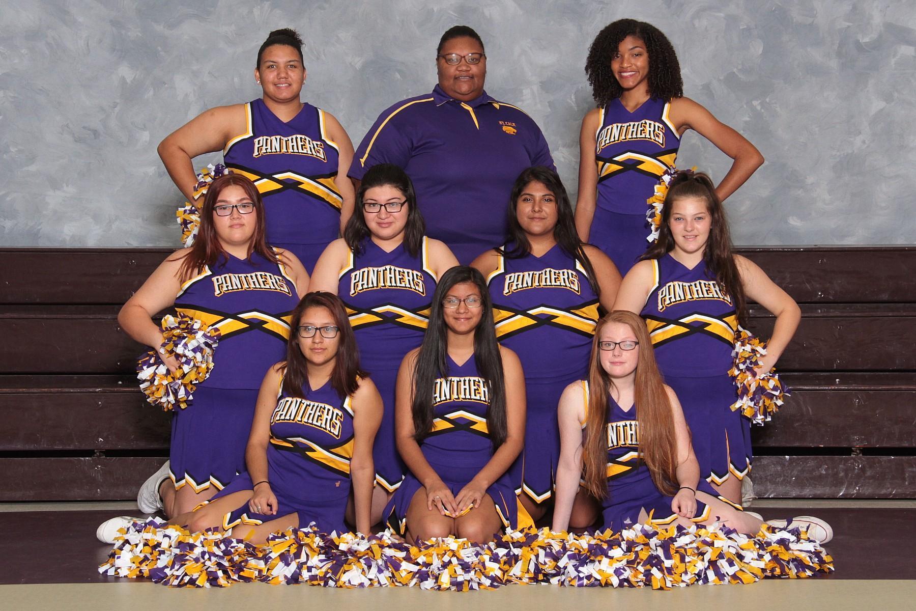 HS cheer team