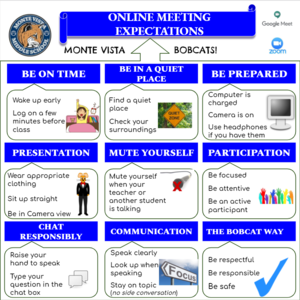 MVMS Online Meeting Expectations flyer