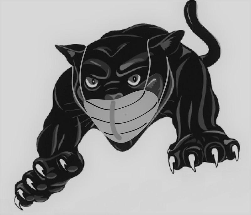 panther with mask