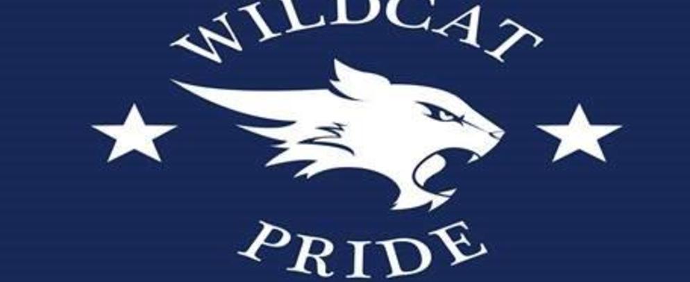 Wildcat Symbol