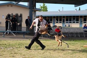 K9 Officer Demonstration