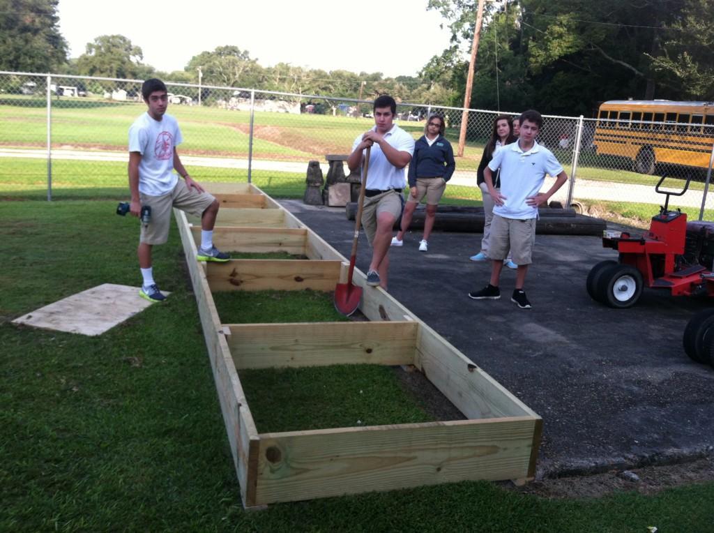 Building a container garden