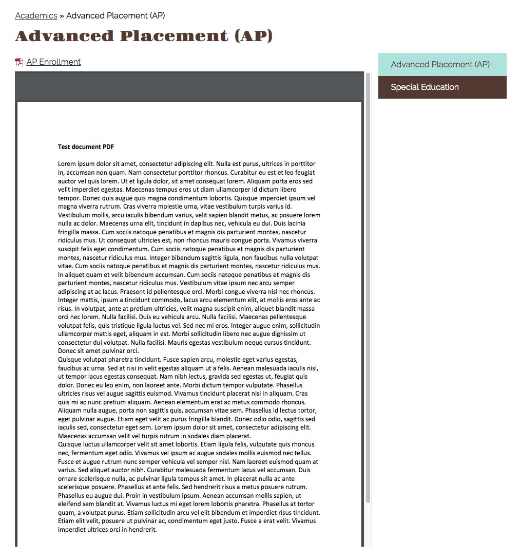 screenshot of embedded pdf set to large