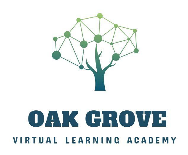 Virtual Learning Academy Logo