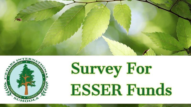 ESSER Funds Survey