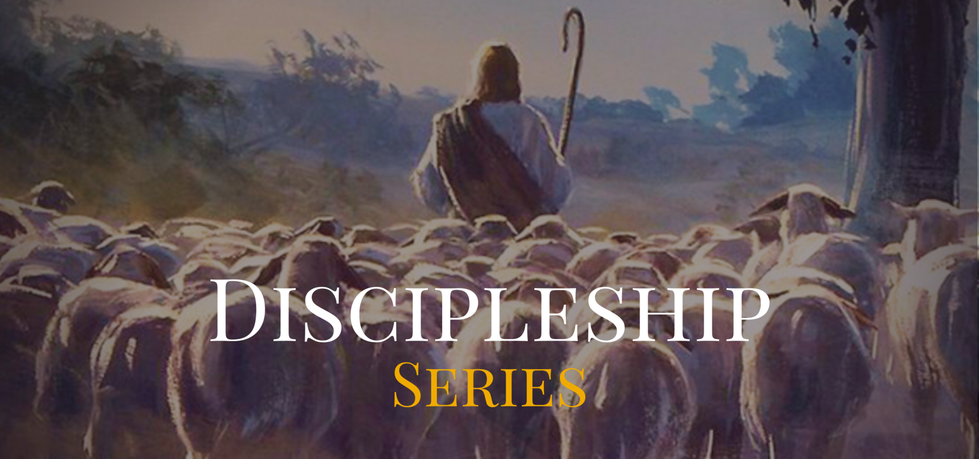 Discipleship Series