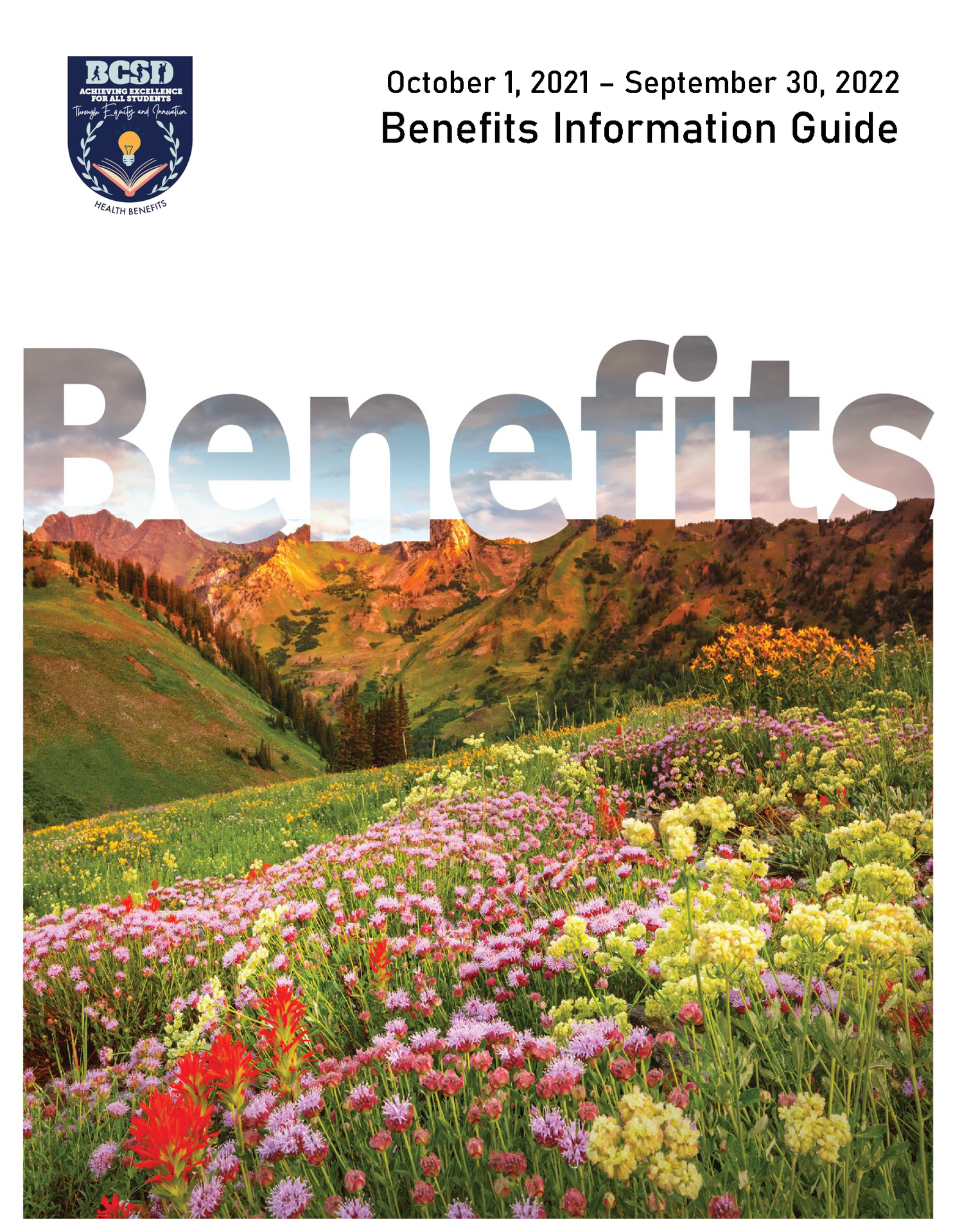 benefits guide flyer