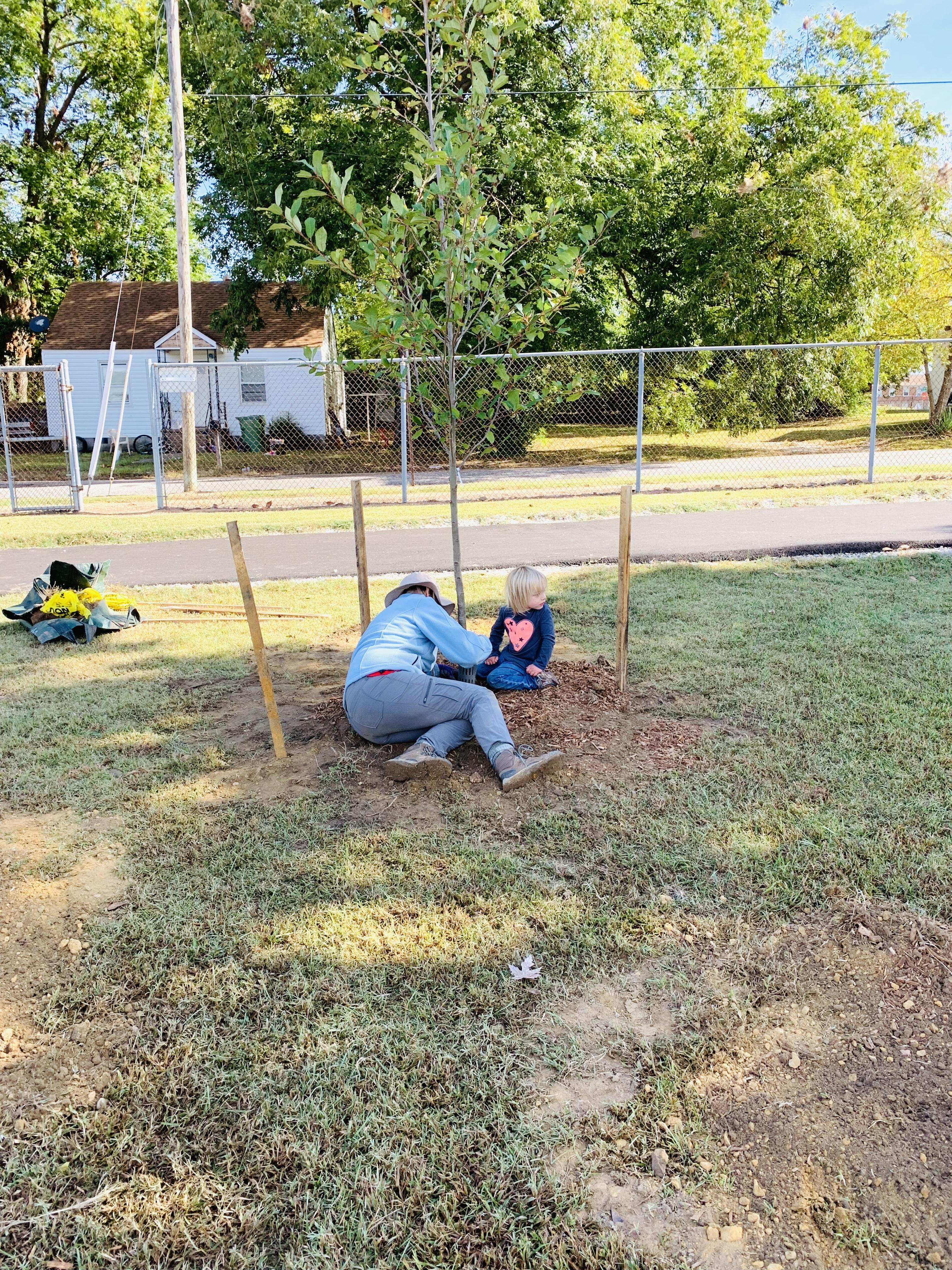 A woman on the ground in front of a newly planted tree.
