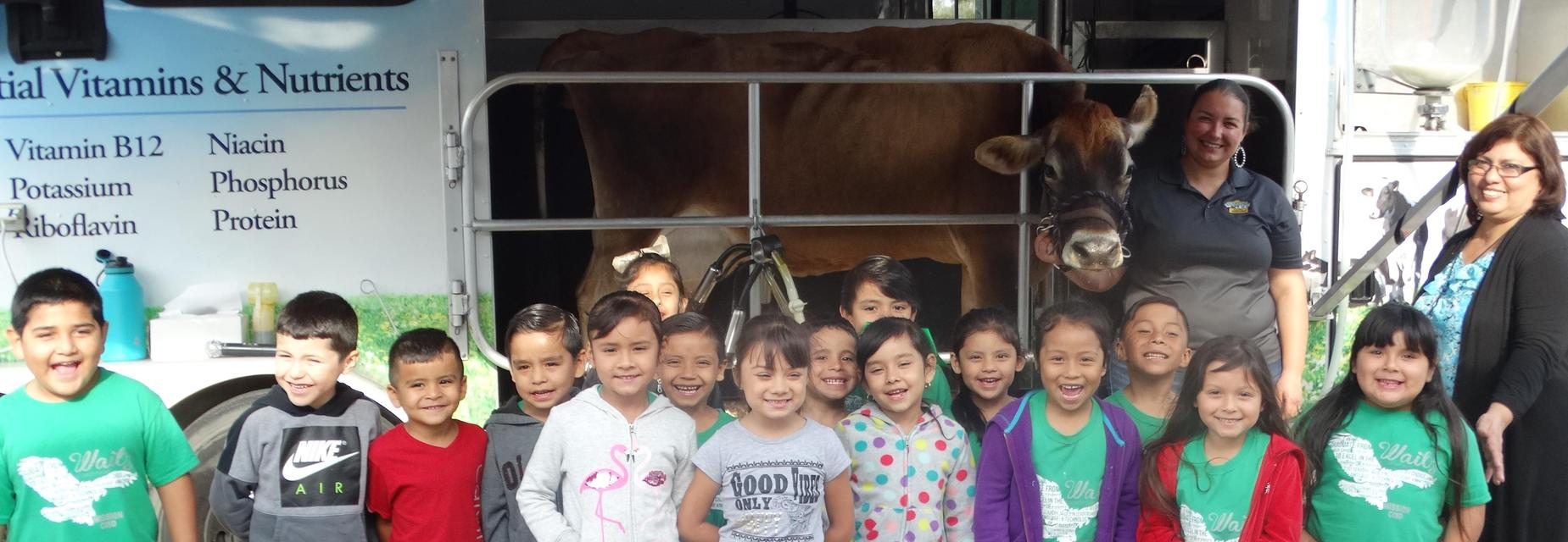 kinder learning about the dairy farm