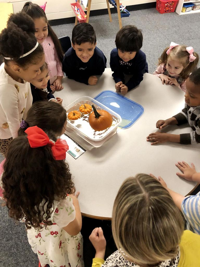 A group of students around a round table, conducting an experiment with a pumpkin and water