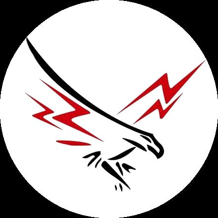 MRHS Falcon Logo