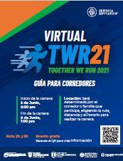 manual carrera twr21
