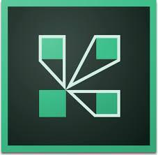 adobe connect icon square shaped of green