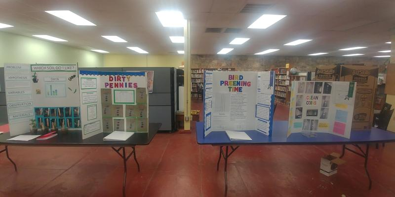 Ione Science Fair