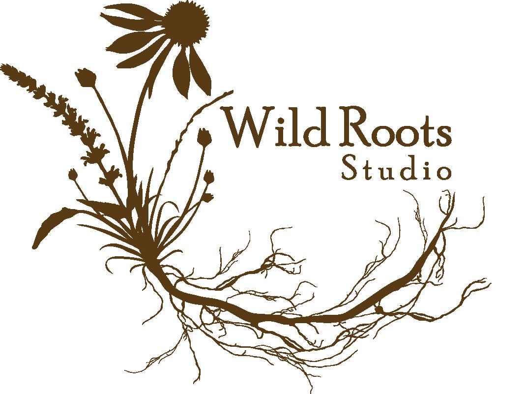 Wild Roots Studio logo AXIS International Academy Enrich Program
